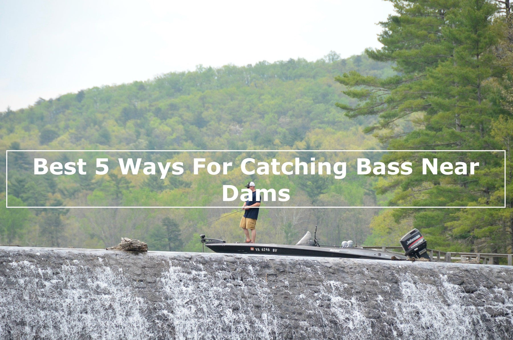 Best 5 Ways For Catching Bass Near Dams