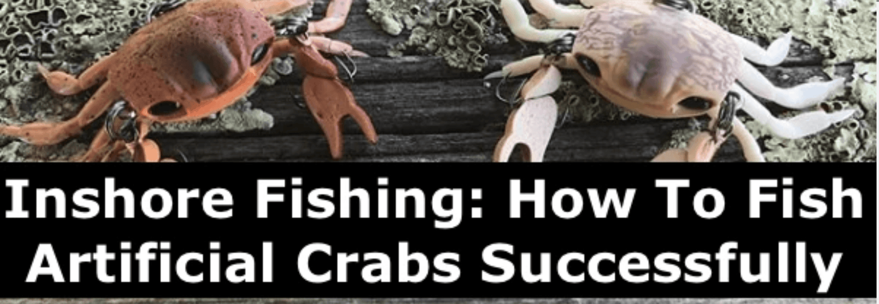 Inshore Fishing - How to Fish Artificial Crabs Successfully
