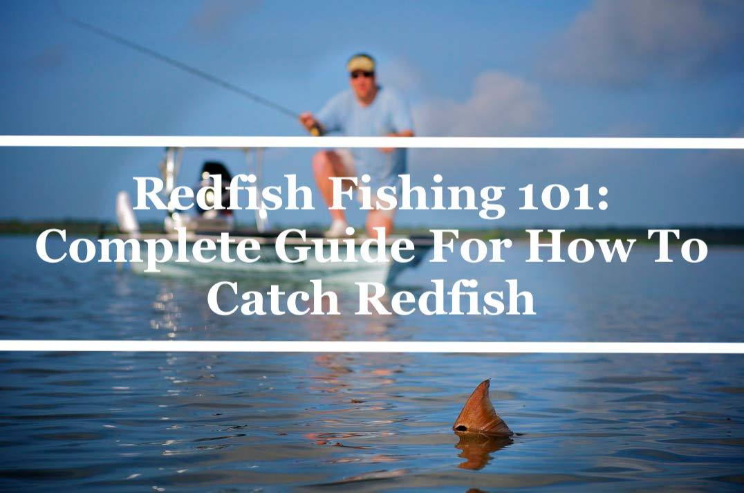 Redfish Fishing 101: Complete Guide For How To Catch Redfish