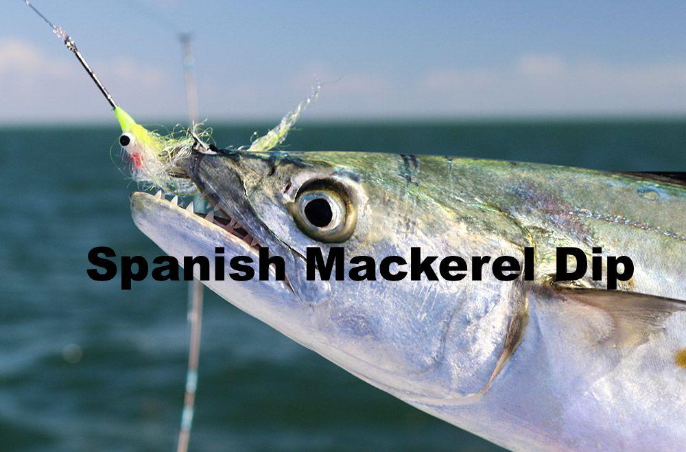Spanish Mackerel Dip