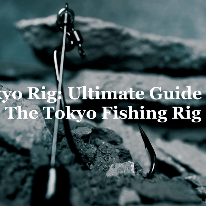Tokyo Rig: Ultimate Guide For The Tokyo Fishing Rig