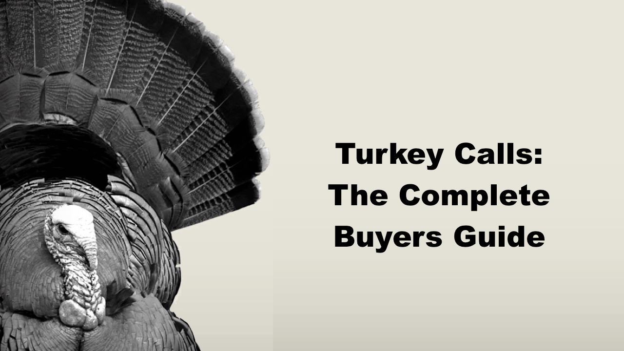 Turkey Calls: The Complete Buyers Guide