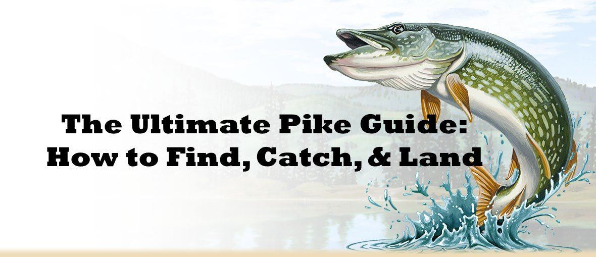 The Ultimate Pike Fishing Guide: How To Find, Catch and Land