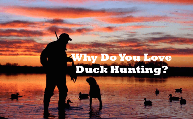 Duck Hunting: The Love For Everything Waterfowl