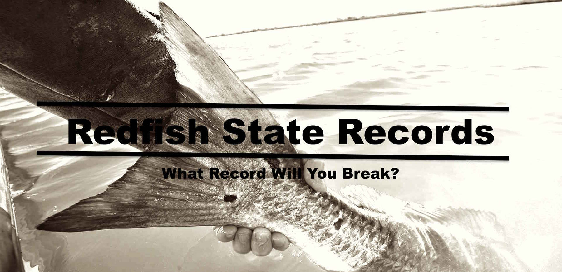 Redfish State Records On Hunting and Fishing Depot