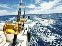 Offshore Fishing Gear on Hunting and Fishing Depot