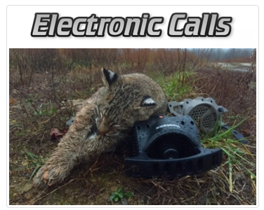 Electronic Calls
