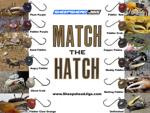 Match The Hatch For Your Sheepshead Jigs