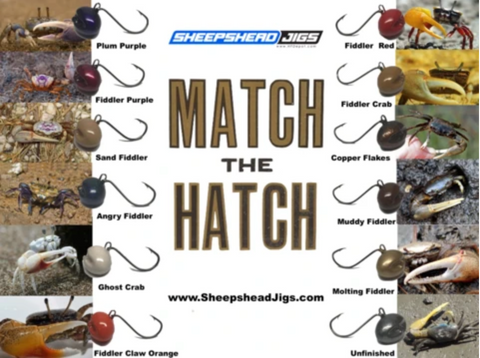 Match The Hatch With Your Sheepshead Jig