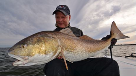 Florida Redfish State Record
