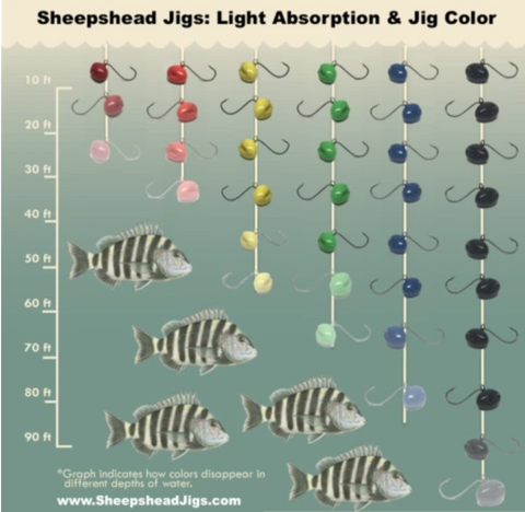 Sheepshead Jigs - Light Absorption & Jig Color