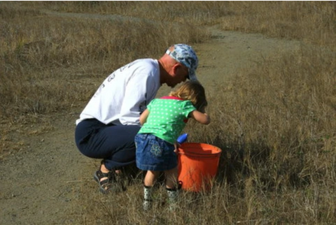Teach them young how to catch fiddler crabs