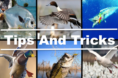 Hunting and Fishing Tips and Tricks