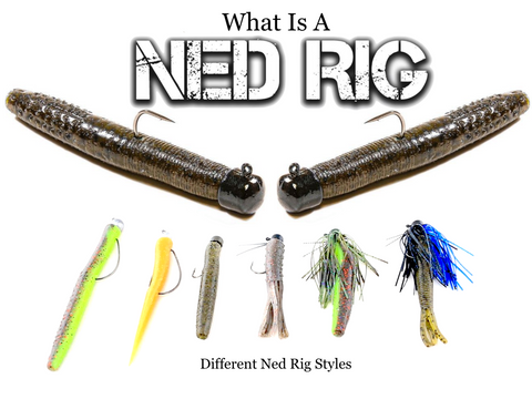 What Is a Ned Rig | Different Ned Rig Styles