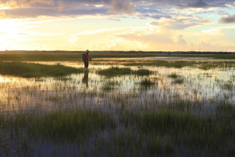 Fishing The Salt marsh