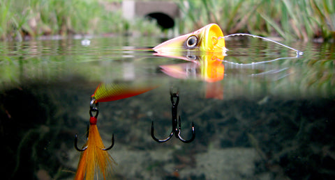 Topwater Bass Fishing Popper