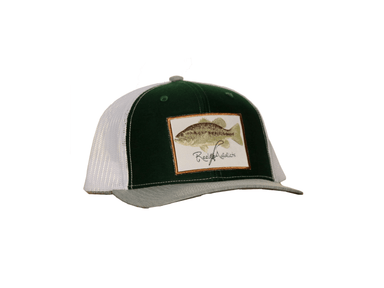 Largemouth Bass Snap Back | Reel Addicts