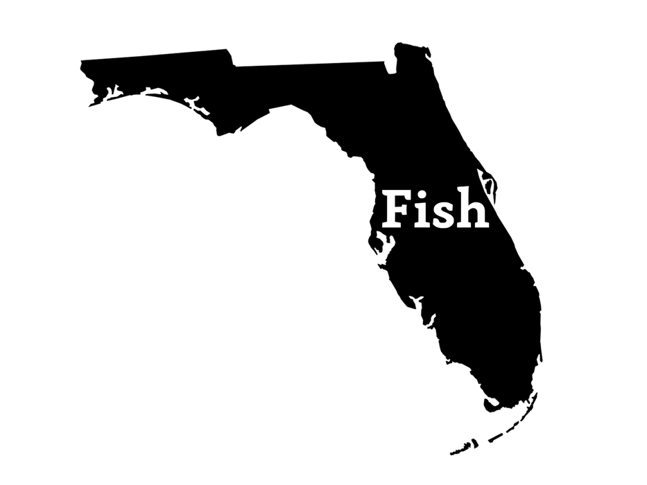 Fish Florida Fishing Decal