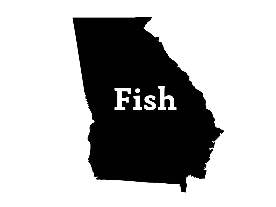 Fish Georgia Decal - Hunting and Fishing Depot