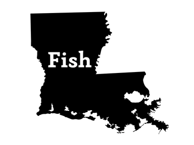 Fish Louisiana Decal - Hunting and Fishing Depot