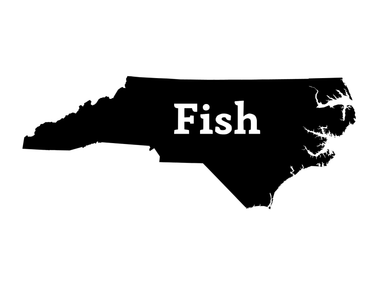Fish North Carolina Decal - Hunting and Fishing Depot