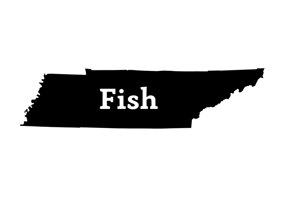 Fish Tennessee Decal - Hunting and Fishing Depot