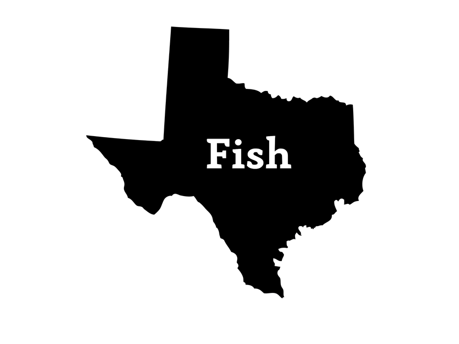 Fish Texas Decal | Hunting and Fishing Depot