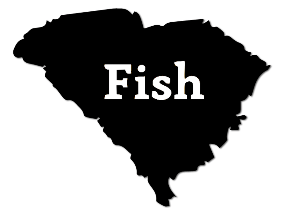 Fish South Carolina Decal - Hunting and Fishing Depot