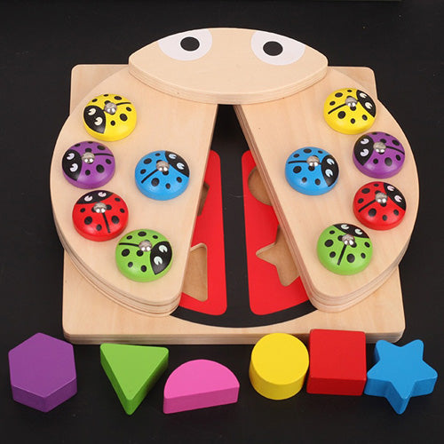 2 in 1 Educational Ladybug