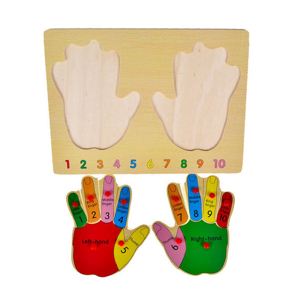 Cognitive educational toys – Finger Learning Puzzle Overview