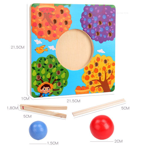 Fruit Tree Sorting Board Size