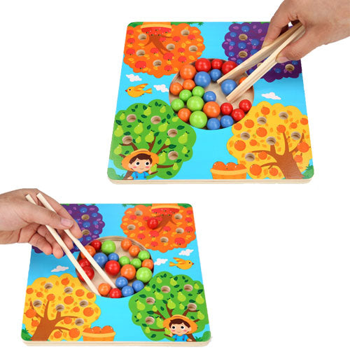 Fruit Tree Sorting Board wooden sticks