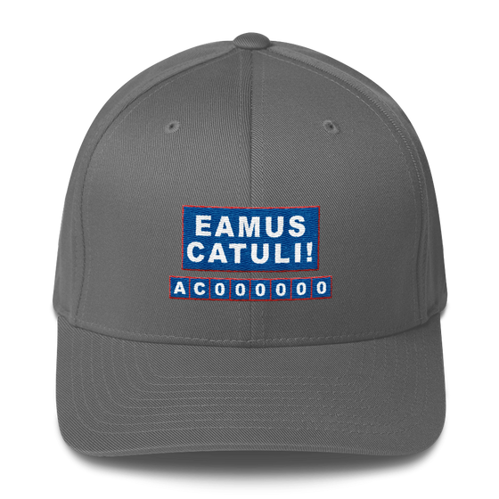 * LIMITED EDITION * EAMUS CATULI - Chicago Cubs - Hat