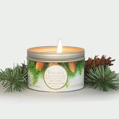 Victoria's Lavender - Lavender Fir Soy Candle