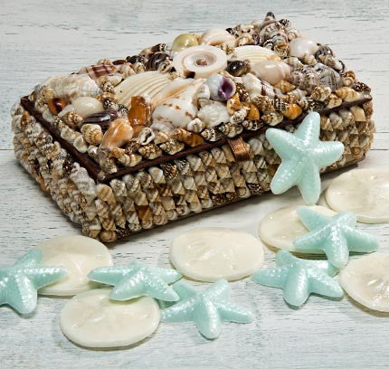 OceanAire seashell box with soaps
