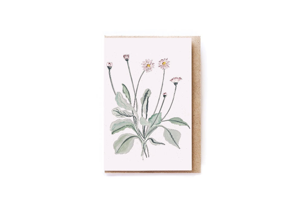 Card Mini Pink Daisies