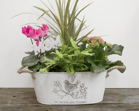 "6x11"" Bird Garden Metal Planter with Jute Handles"