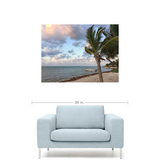Photo print of palm tree blowing in the wind on a beach near the ocean on a partly cloudy day over a couch for size relativity