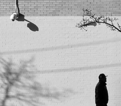 Black and white photograph of man walking by brick wall with shadow of tree branches and surveillance camera