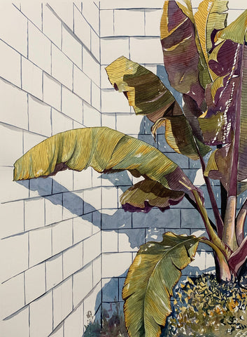 Watercolor painting of a large-leaved green plant touching a white brick wall