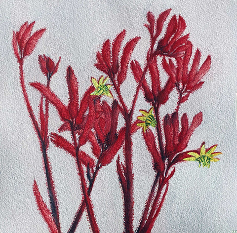 Painting of red and yellow flowers on a white unpainted background