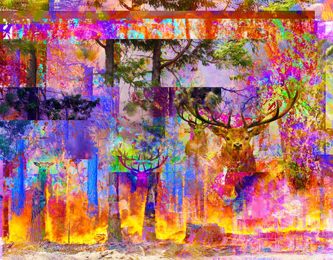Digital photographic composite in cropped boxes with fires, forest, and deer in rainbow colors