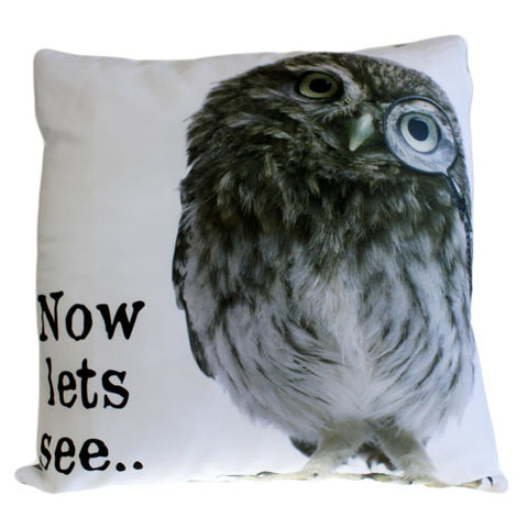 Art Cushion Cover - Now lets see OWL