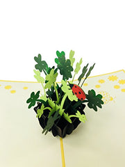 Shamrock Vase Good Luck - WOW 3D Pop Up Card