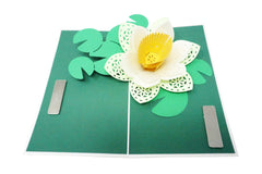 Lotus Flower - WOW 3D Pop Up Greeting Card