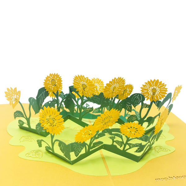 Wow Sun Flower - 3D Pop Up Greeting Card for All Occasions Birthday, Love, Anniversary, Congratulations, Thank you, Mother Day, Valentine, Friendship, Sympathy,Get Well - Premium Paper 2-Layer Message