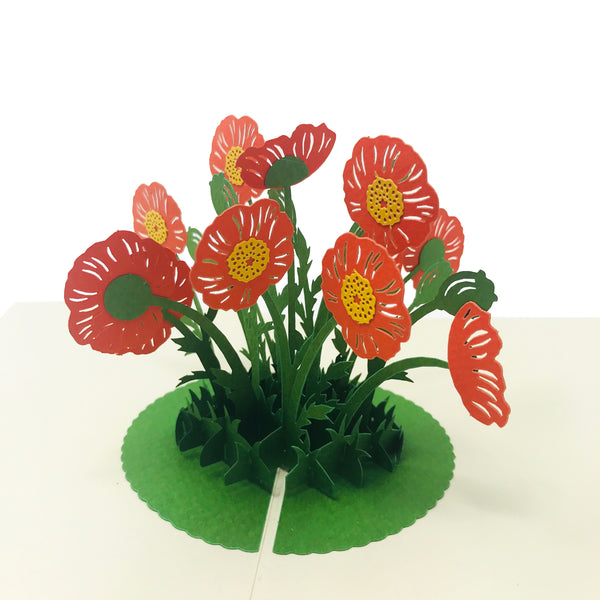 Wow Poppy Flower - 3D Pop Up Greeting Card for All Occasions Birthday, Love, Anniversary, Good Bye, Thank you, Mother Day, Valentine, Friendship, Sympathy, Get Well - Premium Paper 2-Layer Message