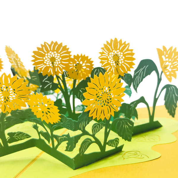 Wow Sun Flower - 3D Pop Up Greeting Card