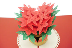 Poinsettia - Christmas Pop Up Card