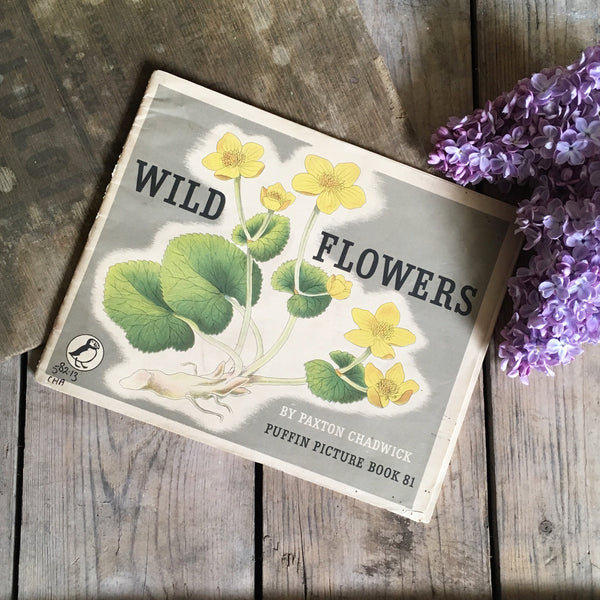 1960s Wild Flowers Puffin Picture Book